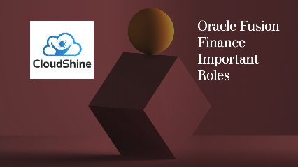 Oracle Fusion Finance  Important Roles