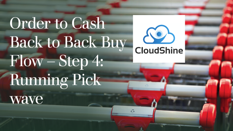 Order to Cash Back to Back Buy Flow – Step 4: Picking and Shipping